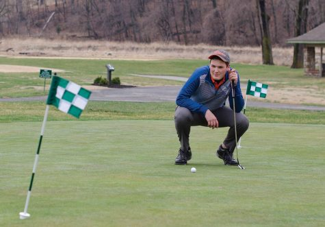 Golfers place fourth at state tournament