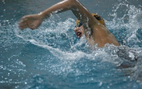Down the stretch: swimming