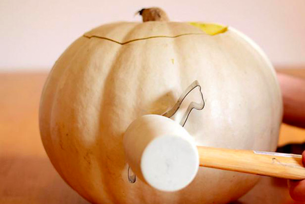 Your Guide to Having the Perfect Pumpkins